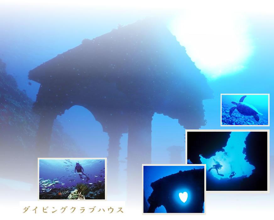 与論島でダイビング