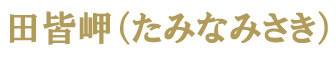 田皆岬ロゴ